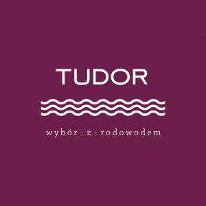 tudor-house-logo