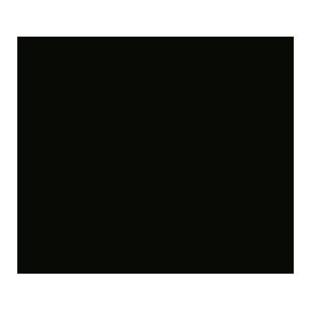 SingleMalt Fort Whisky