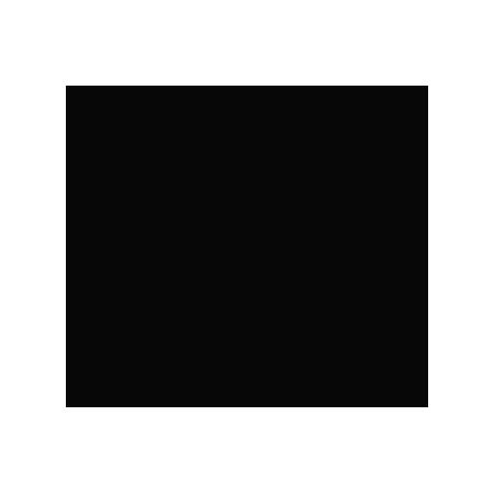RON DEl REY