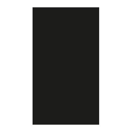 The Matsui